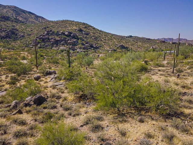 21606030G E Skyline Drive, Cave Creek, AZ 85331 (MLS #6007444) :: Team Wilson Real Estate