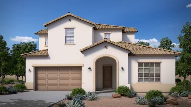 21022 E Via Del Sol, Queen Creek, AZ 85142 (MLS #6007498) :: Revelation Real Estate