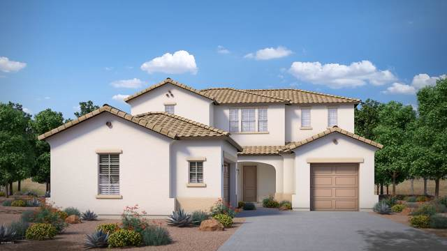 21114 E Camina Buena Vista, Queen Creek, AZ 85142 (MLS #6007515) :: Revelation Real Estate