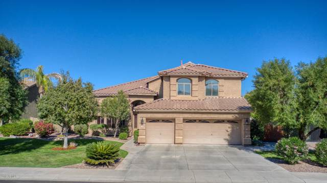 1398 E Loma Vista Street, Gilbert, AZ 85295 (MLS #6007587) :: The Laughton Team