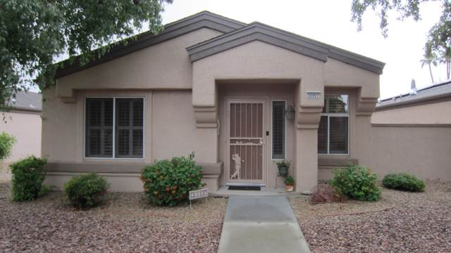 20007 N Greenview Drive, Sun City West, AZ 85375 (MLS #6007589) :: The Laughton Team