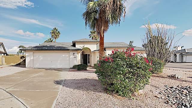 19201 N 41ST Street, Phoenix, AZ 85050 (MLS #6007807) :: The Daniel Montez Real Estate Group