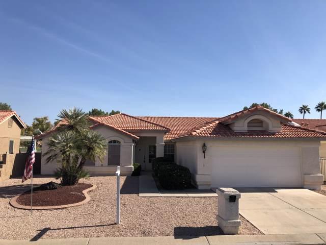 25227 S Buttonwood Drive, Sun Lakes, AZ 85248 (MLS #6007959) :: Scott Gaertner Group