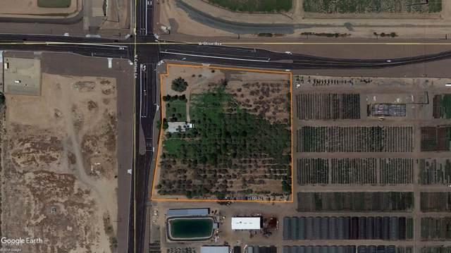 8925 N Cotton Lane, Waddell, AZ 85355 (MLS #6007967) :: Long Realty West Valley