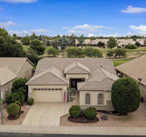 17419 N Goldwater Drive, Surprise, AZ 85374 (MLS #6007985) :: Long Realty West Valley