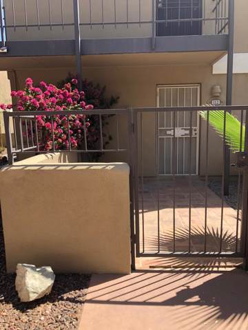 4615 N 22nd Street #112, Phoenix, AZ 85016 (MLS #6007991) :: The Results Group
