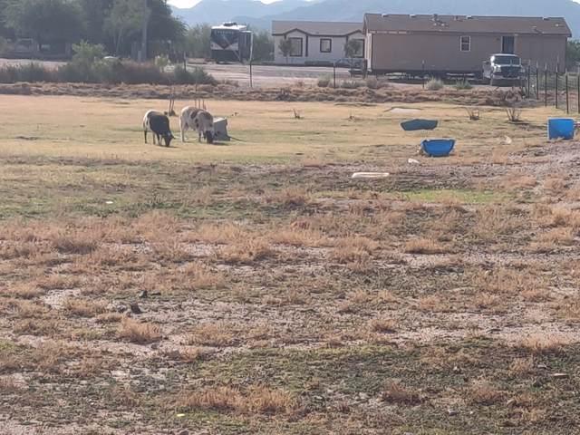 0 S Johnson Road, Buckeye, AZ 85326 (MLS #6008009) :: The Bill and Cindy Flowers Team