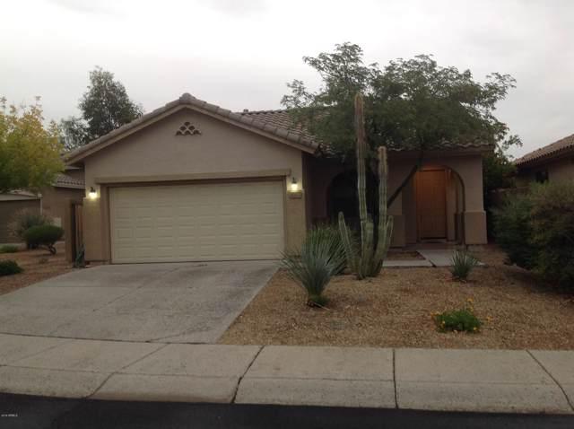 40115 N Bridlewood Court, Phoenix, AZ 85086 (MLS #6008103) :: Yost Realty Group at RE/MAX Casa Grande