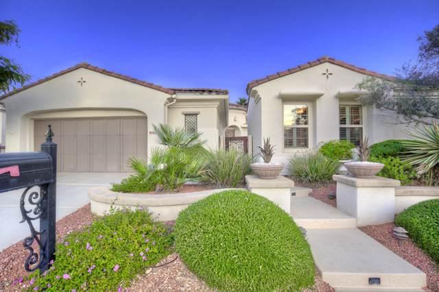 22629 N Arrellaga Drive, Sun City West, AZ 85375 (MLS #6008148) :: Long Realty West Valley