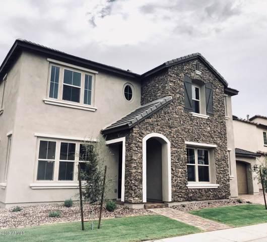 920 W Yosemite Drive, Chandler, AZ 85248 (MLS #6008257) :: Keller Williams Realty Phoenix