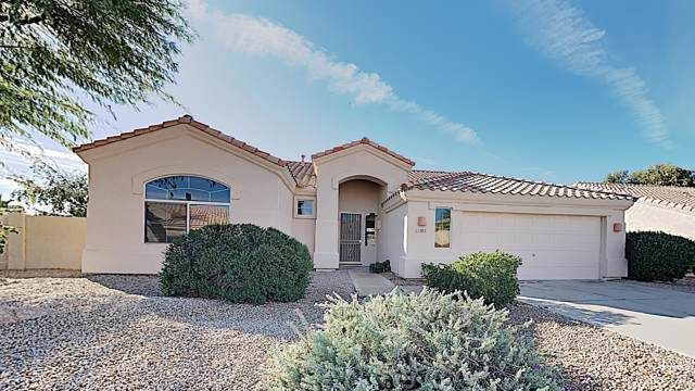 11205 W Bermuda Drive, Avondale, AZ 85392 (MLS #6008550) :: The Daniel Montez Real Estate Group