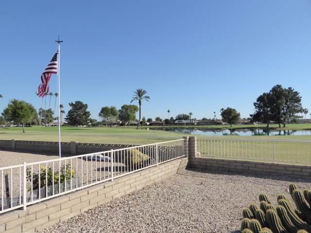 13851 N Cameo Drive, Sun City, AZ 85351 (MLS #6008553) :: My Home Group