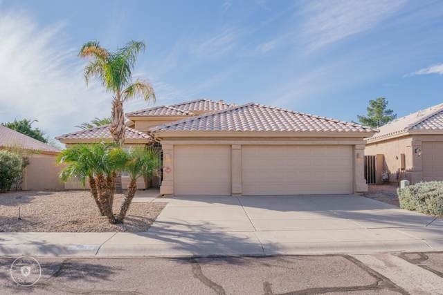 22310 N 66TH Lane, Glendale, AZ 85310 (MLS #6008653) :: Revelation Real Estate