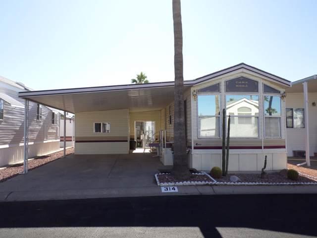 3710 S Goldfield Road, Apache Junction, AZ 85119 (MLS #6008874) :: Nate Martinez Team