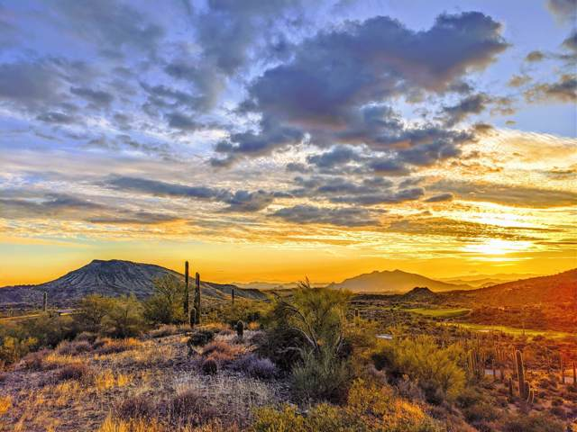 9760 E Honey Mesquite Drive, Scottsdale, AZ 85262 (MLS #6009039) :: The Results Group
