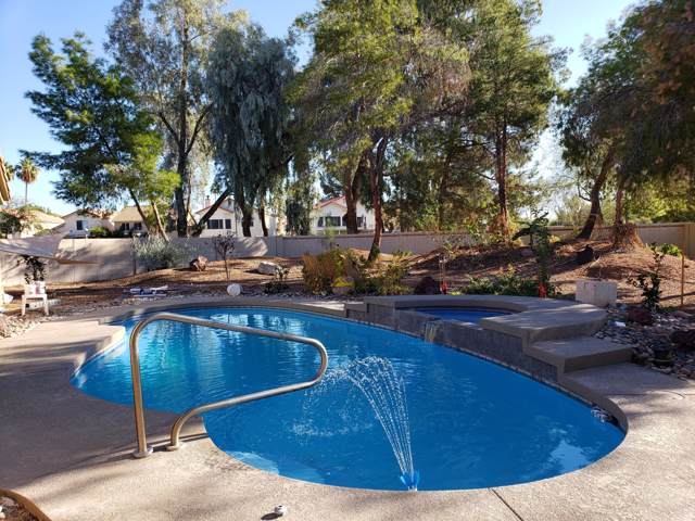 1337 E Mineral Road, Gilbert, AZ 85234 (MLS #6009048) :: Revelation Real Estate