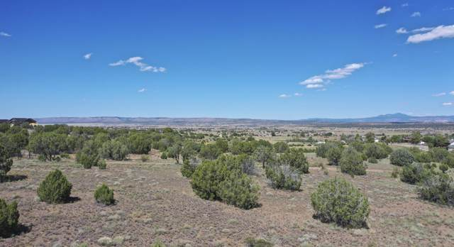 6350 N Mangas (Lot Split B) Drive, Paulden, AZ 86334 (MLS #6009088) :: Yost Realty Group at RE/MAX Casa Grande