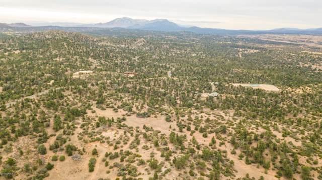 16600 N Petroglyph Road, Prescott, AZ 86305 (MLS #6009559) :: Long Realty West Valley