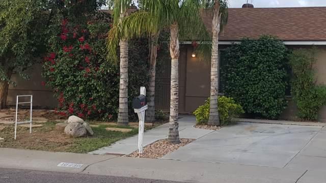 18236 N 20TH Parkway, Phoenix, AZ 85023 (MLS #6009882) :: The Kenny Klaus Team