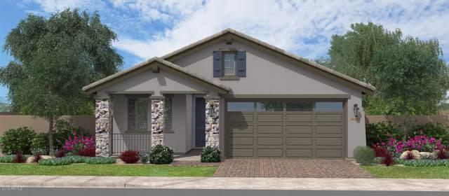 15173 W Pierce Street, Goodyear, AZ 85338 (MLS #6009978) :: Brett Tanner Home Selling Team
