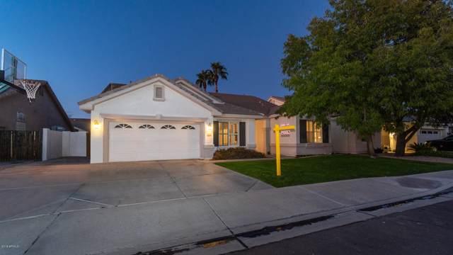 1444 W Spruce Drive, Chandler, AZ 85286 (MLS #6010191) :: The Kenny Klaus Team