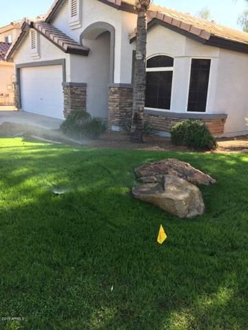 2449 E Jasper Drive, Gilbert, AZ 85296 (MLS #6010256) :: Revelation Real Estate