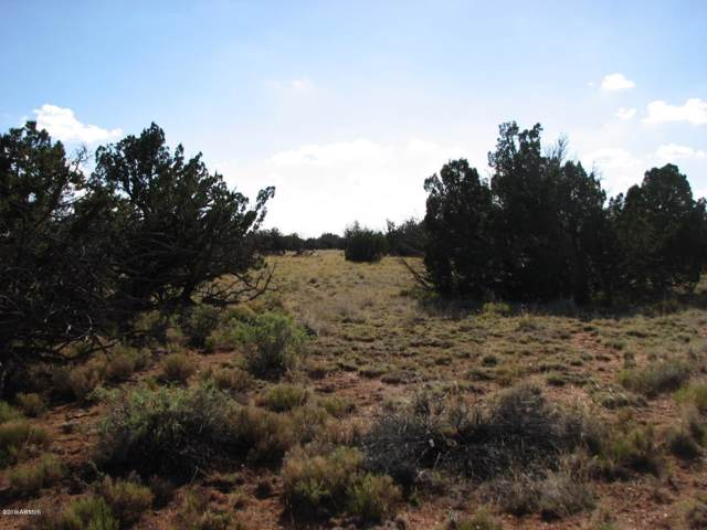 Sec 33 Chevelon Retreat, Heber, AZ 85928 (MLS #6010529) :: Kepple Real Estate Group