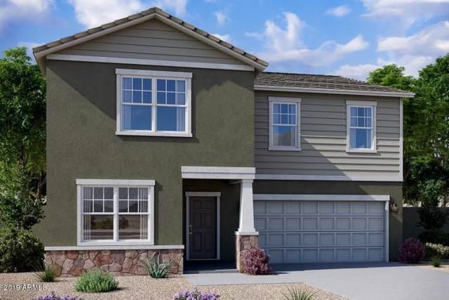 4518 W Saddlebush Way, Queen Creek, AZ 85142 (MLS #6010674) :: Santizo Realty Group