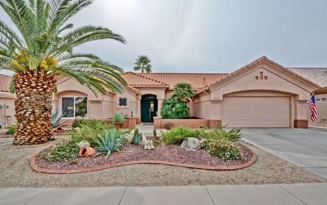 14137 W Robertson Drive, Sun City West, AZ 85375 (MLS #6010888) :: Brett Tanner Home Selling Team