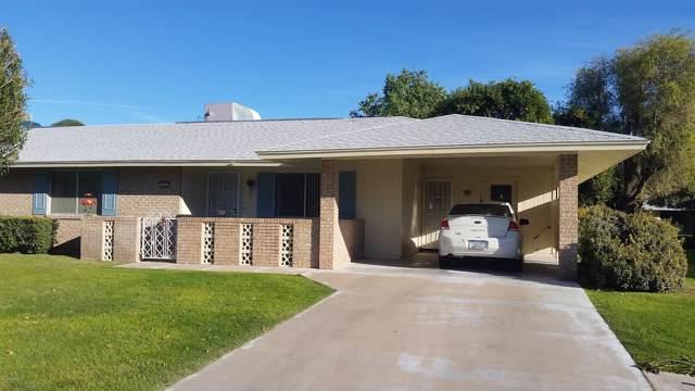 10423 W Desert Forest Circle, Sun City, AZ 85351 (MLS #6010927) :: Yost Realty Group at RE/MAX Casa Grande