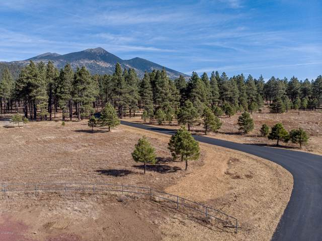 9350 N Snowbowl Ranch Road, Flagstaff, AZ 86001 (MLS #6011135) :: The Kenny Klaus Team