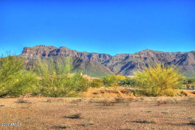 2423 S Sunset Village Drive, Gold Canyon, AZ 85118 (MLS #6011261) :: The Kenny Klaus Team