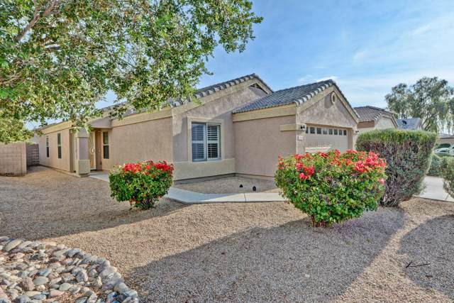 15109 N Verbena Street, El Mirage, AZ 85335 (MLS #6011262) :: The Helping Hands Team