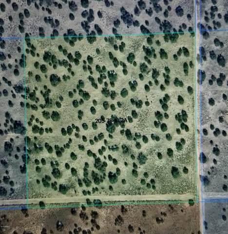 Lot112A N Red Sky Ranch Estate, St Johns, AZ 85936 (MLS #6011269) :: The Kenny Klaus Team