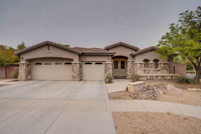 404 W Seagull Drive, Chandler, AZ 85286 (MLS #6011278) :: Riddle Realty Group - Keller Williams Arizona Realty