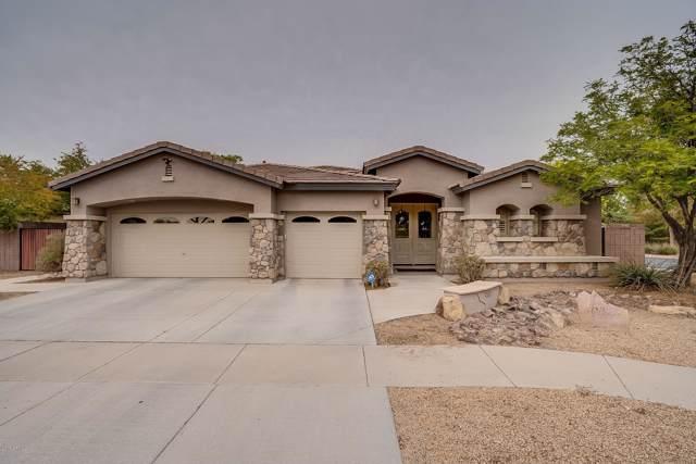 404 W Seagull Drive, Chandler, AZ 85286 (MLS #6011278) :: Kepple Real Estate Group