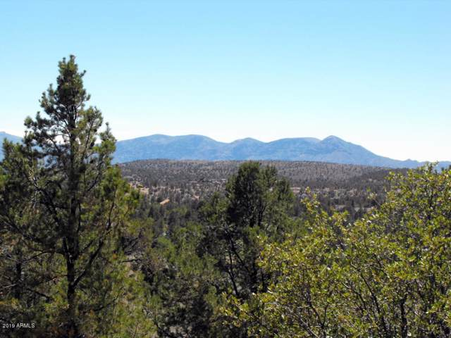 802 N Oak Point, Payson, AZ 85541 (MLS #6011339) :: neXGen Real Estate