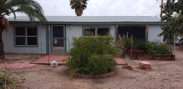 514 N Delaware Drive, Apache Junction, AZ 85120 (MLS #6011469) :: The Helping Hands Team
