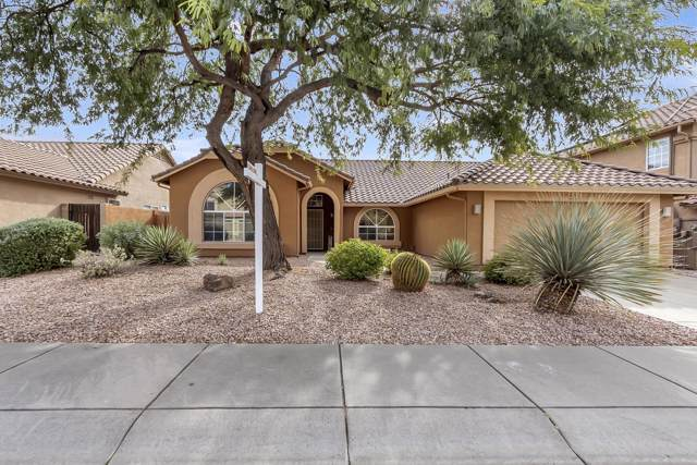 4529 E Hunter Court, Cave Creek, AZ 85331 (MLS #6011577) :: Lux Home Group at  Keller Williams Realty Phoenix