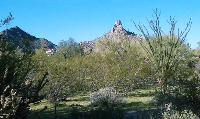 10205 E Desert Vista Drive, Scottsdale, AZ 85255 (MLS #6011584) :: The W Group