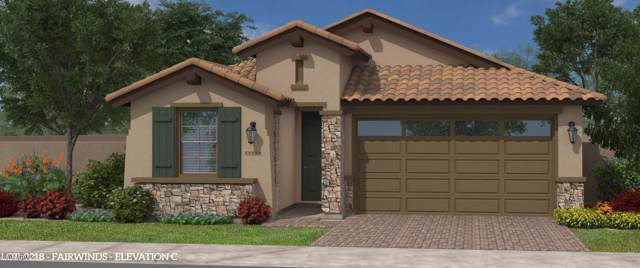2820 W Havasu Drive, San Tan Valley, AZ 85142 (MLS #6011601) :: Santizo Realty Group