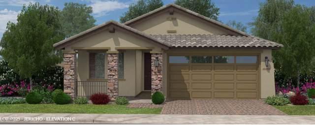 2879 W Blue River Drive, San Tan Valley, AZ 85142 (MLS #6011614) :: Santizo Realty Group