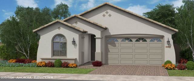 2865 W Blue River Drive, San Tan Valley, AZ 85142 (MLS #6011620) :: Santizo Realty Group