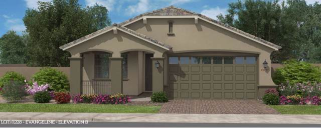 2835 W Blue River Drive, San Tan Valley, AZ 85142 (MLS #6011628) :: Santizo Realty Group
