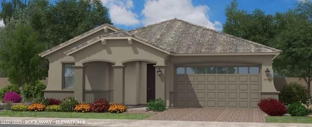 2812 W Wilcox Playa Drive W, San Tan Valley, AZ 85142 (MLS #6011684) :: The Kenny Klaus Team