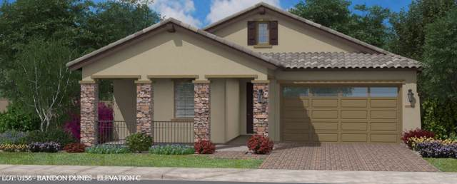 2832 W Wilcox Playa Drive W, San Tan Valley, AZ 85142 (MLS #6011694) :: The Kenny Klaus Team