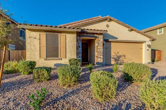 2756 E Augusta Avenue, Gilbert, AZ 85298 (MLS #6011723) :: Yost Realty Group at RE/MAX Casa Grande