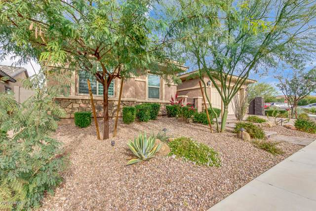 22924 N 46TH Street, Phoenix, AZ 85050 (MLS #6011807) :: The W Group