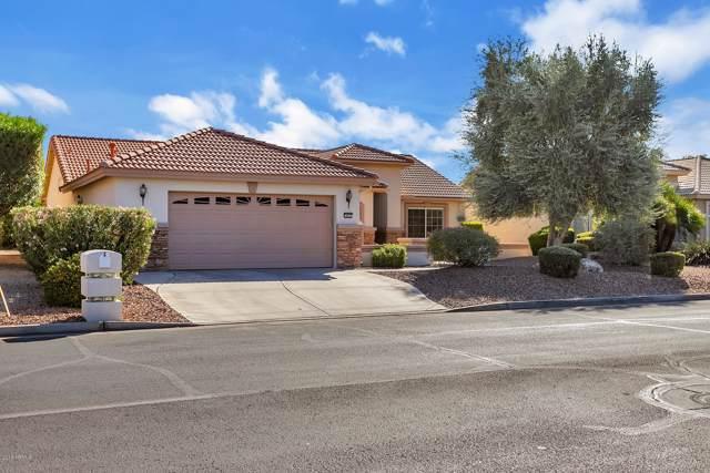 14891 W Robson Circle S, Goodyear, AZ 85395 (#6011972) :: Luxury Group - Realty Executives Tucson Elite