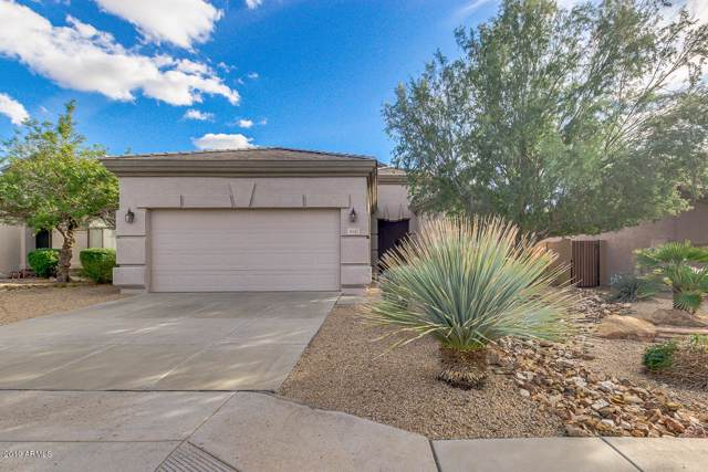 6537 W Andrea Drive, Phoenix, AZ 85083 (MLS #6012020) :: Yost Realty Group at RE/MAX Casa Grande